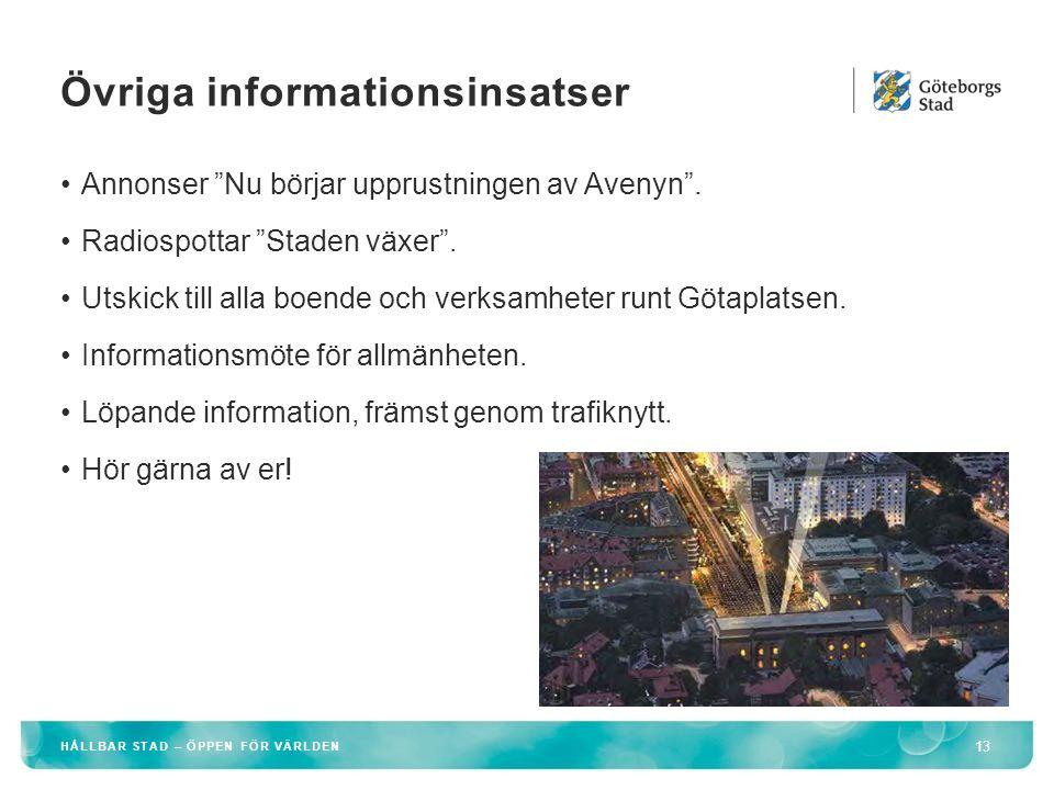 Övriga informationsinsatser