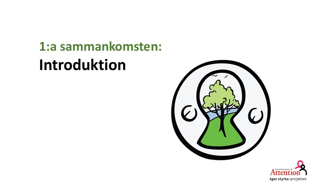 1:a sammankomsten: Introduktion