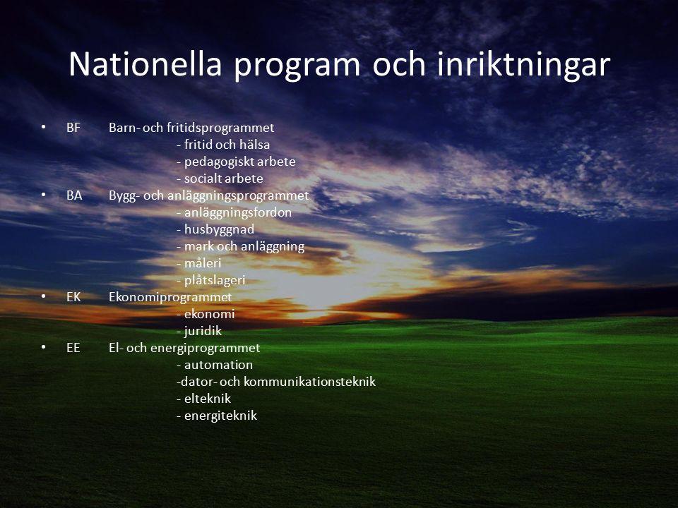 Nationella program och inriktningar
