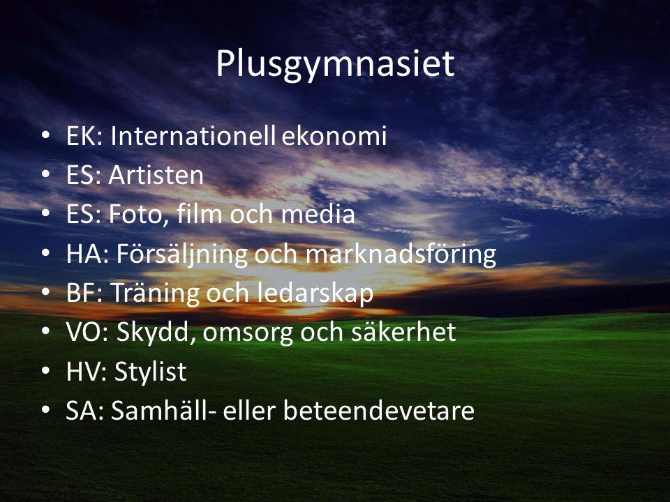 Plusgymnasiet EK: Internationell ekonomi ES: Artisten