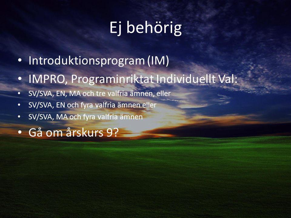 Ej behörig Introduktionsprogram (IM)