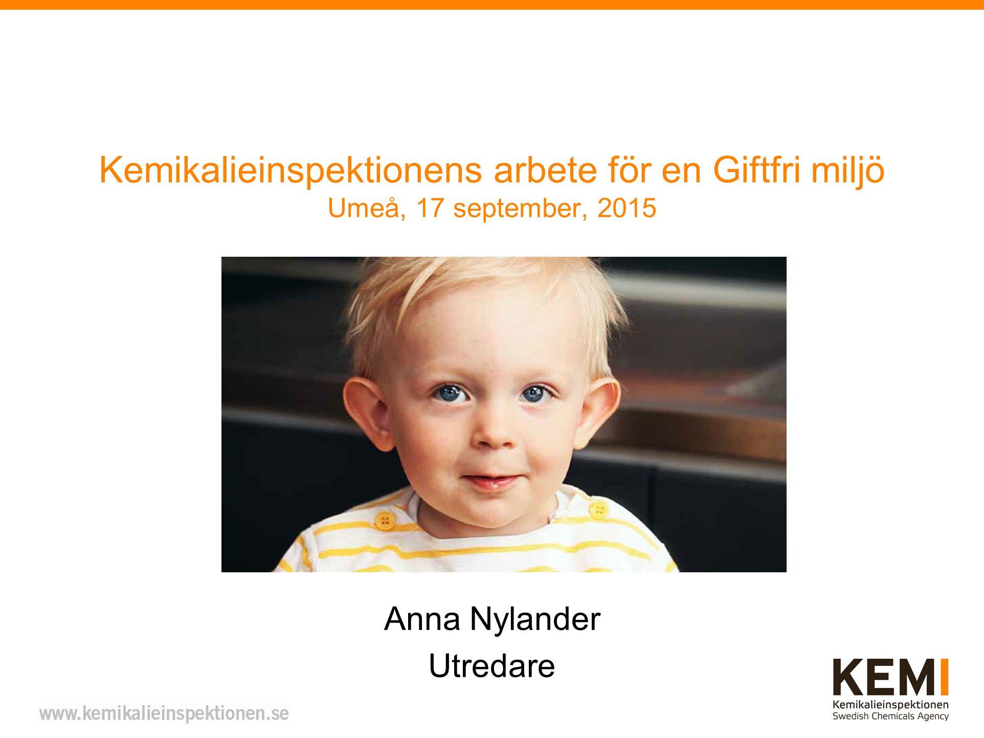 Anna Nylander Utredare