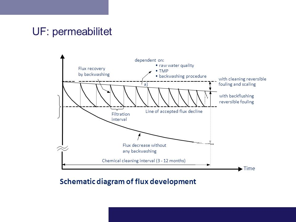 UF: permeabilitet Schematic diagram of flux development Time