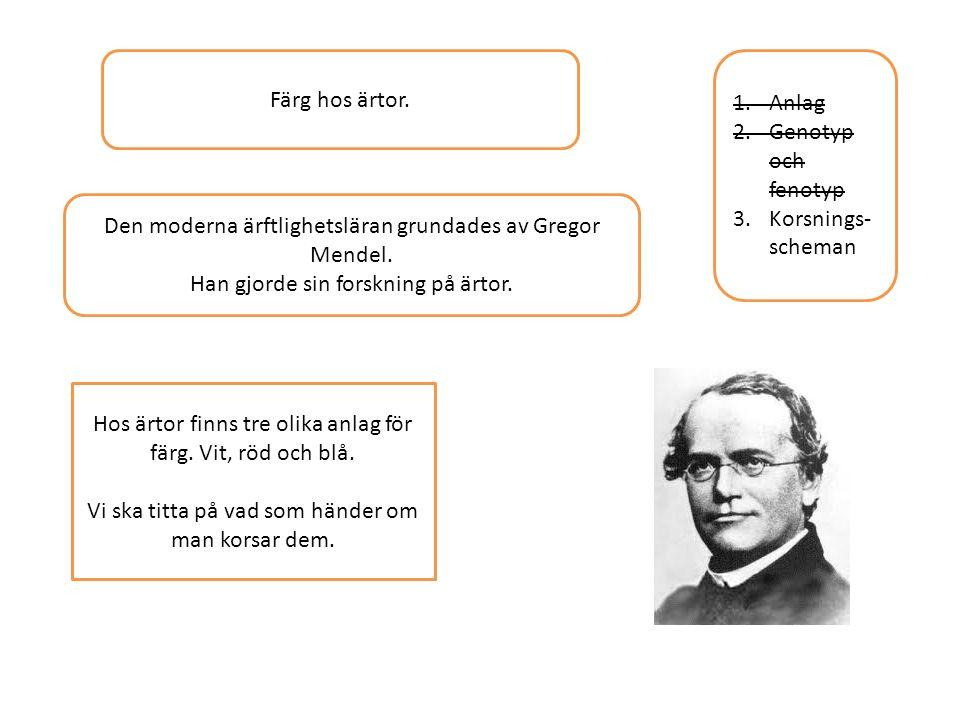 Den moderna ärftlighetsläran grundades av Gregor Mendel.