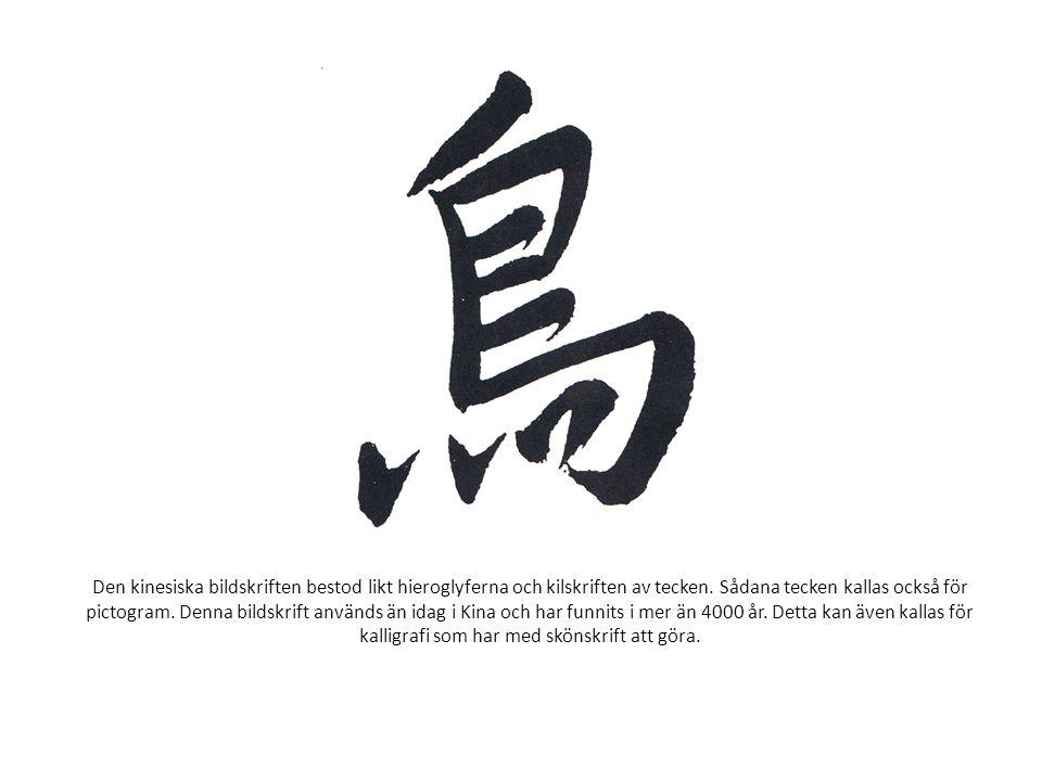 Den kinesiska bildskriften bestod likt hieroglyferna och kilskriften av tecken.