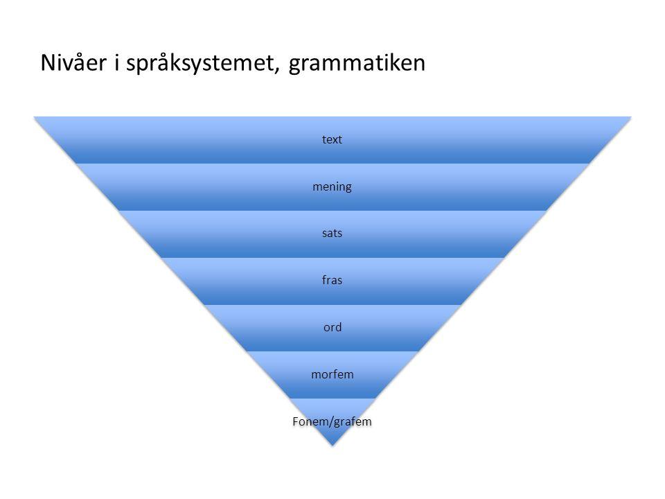 Nivåer i språksystemet, grammatiken