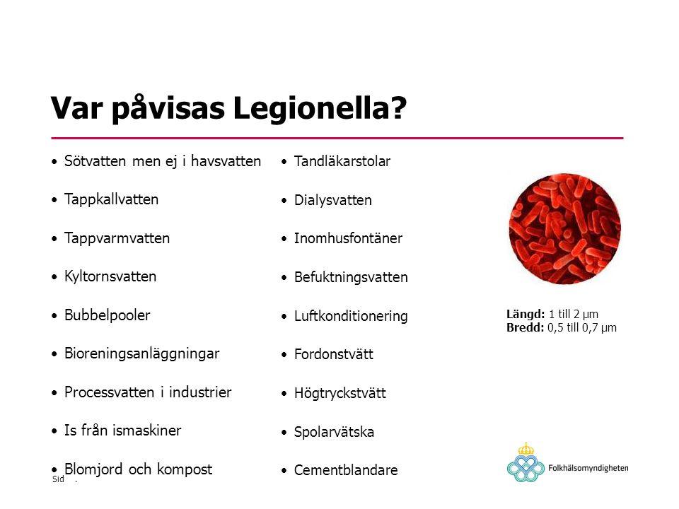 Var påvisas Legionella