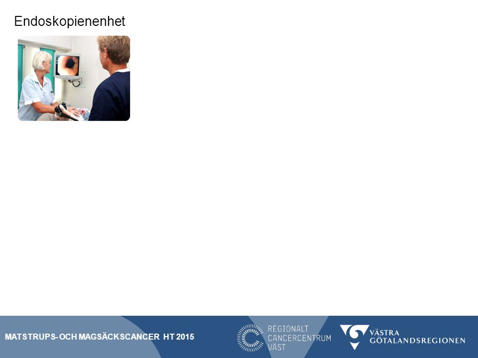 Endoskopienenhet SVF Matstrups- och Magsäckscancer HT 2015