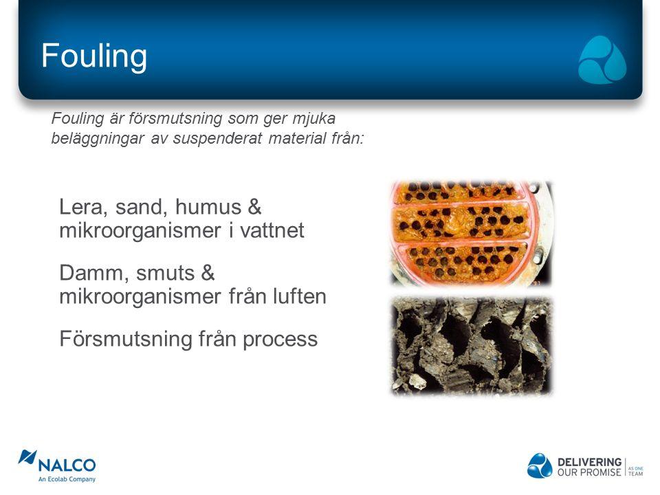 Fouling Lera, sand, humus & mikroorganismer i vattnet