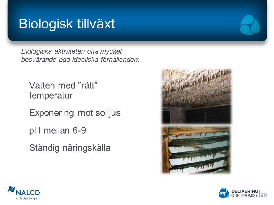 Biologisk tillväxt Vatten med rätt temperatur Exponering mot solljus