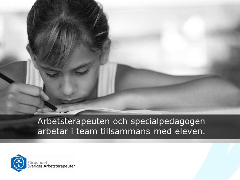 Arbetsterapeuten och specialpedagogen arbetar i team tillsammans med eleven.