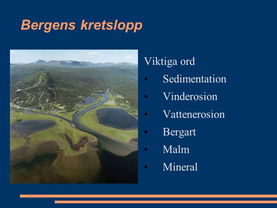 Bergens kretslopp Viktiga ord Sedimentation Vinderosion Vattenerosion