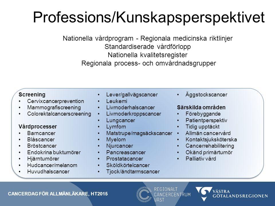 Professions/Kunskapsperspektivet