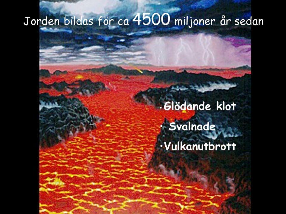 Jorden bildas för ca 4500 miljoner år sedan