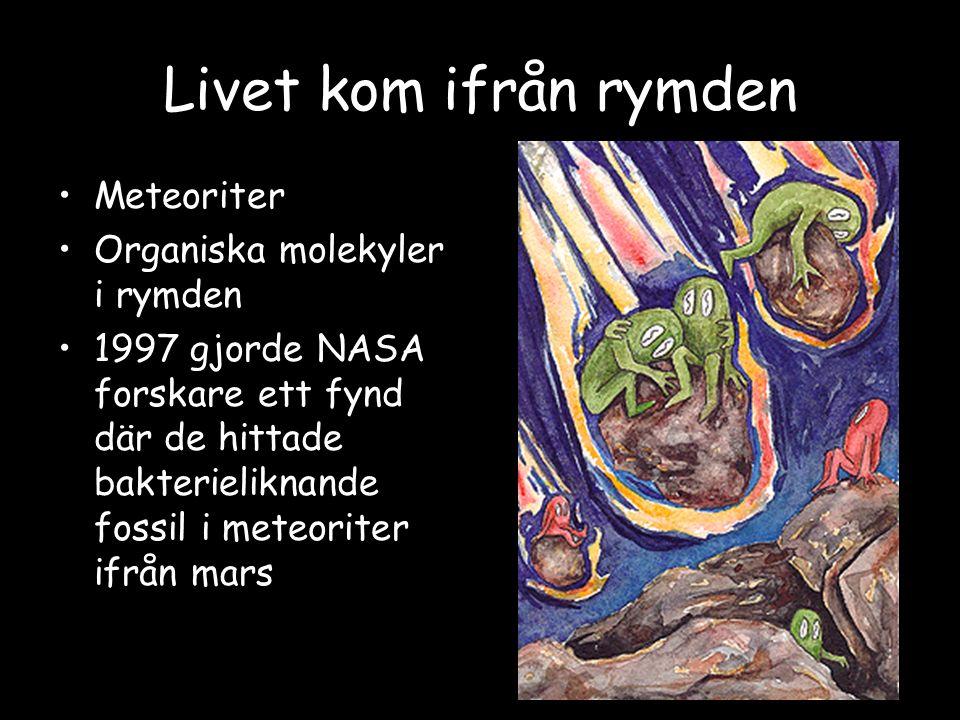Livet kom ifrån rymden Meteoriter Organiska molekyler i rymden