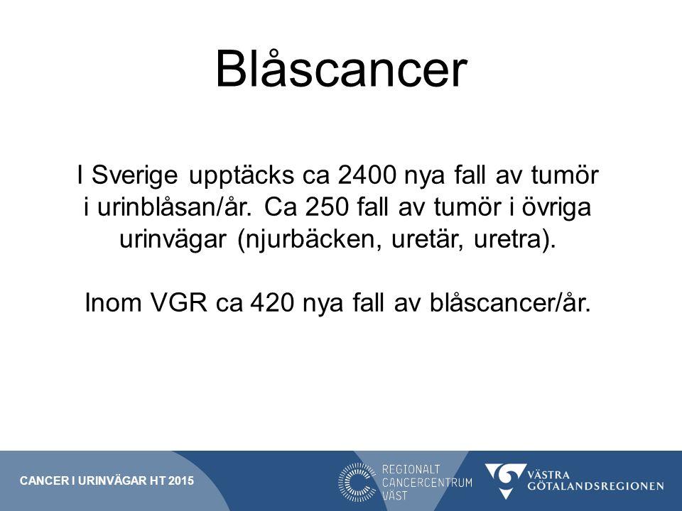 Inom VGR ca 420 nya fall av blåscancer/år.
