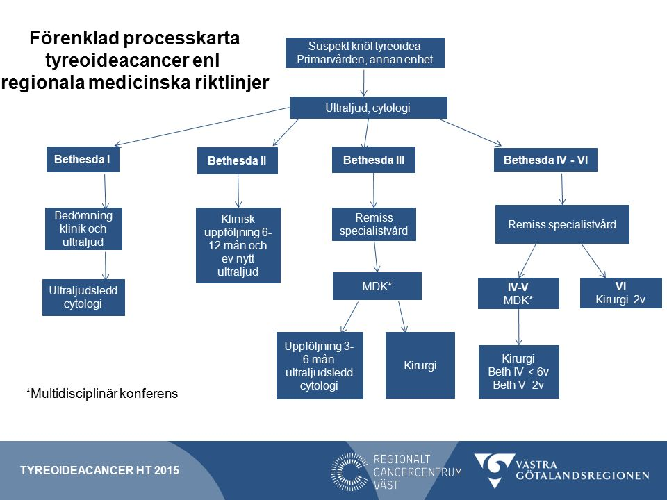 Förenklad processkarta regionala medicinska riktlinjer