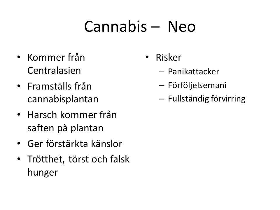 Cannabis – Neo Kommer från Centralasien