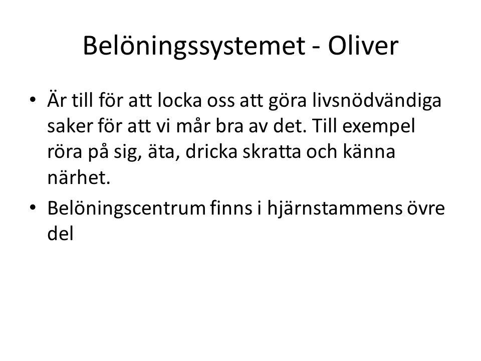 Belöningssystemet - Oliver