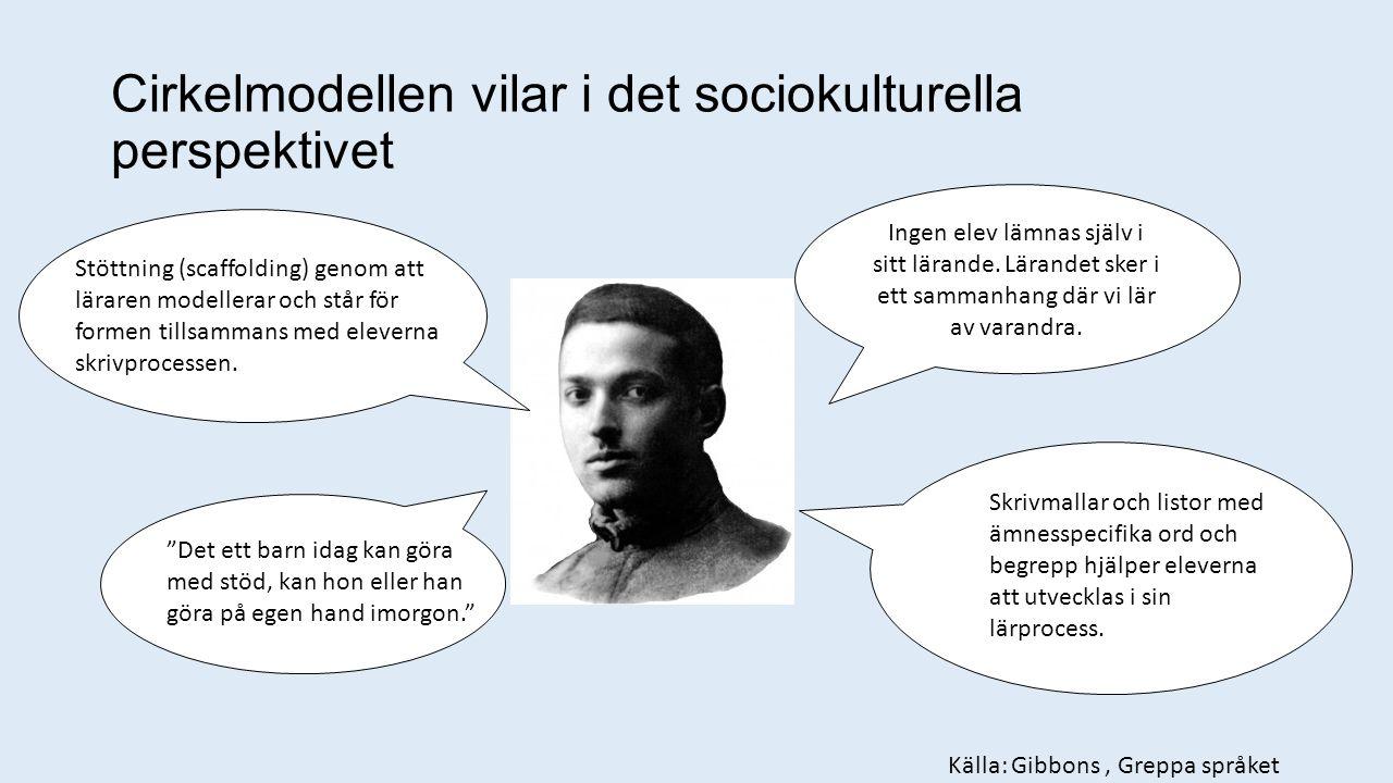 Cirkelmodellen vilar i det sociokulturella perspektivet