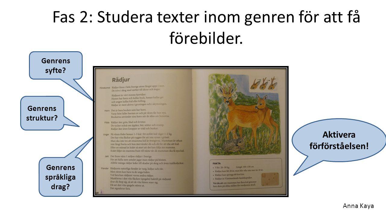 Fas 2: Studera texter inom genren för att få förebilder.