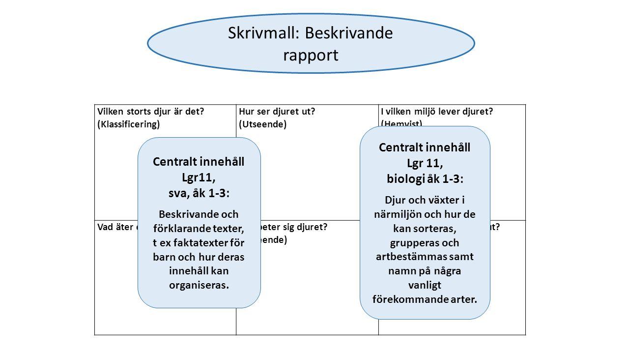 Skrivmall: Beskrivande rapport