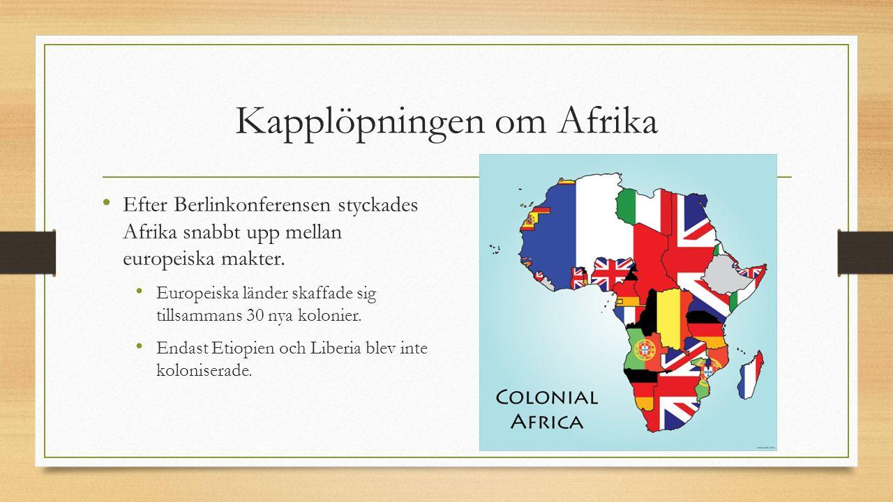 Kapplöpningen om Afrika