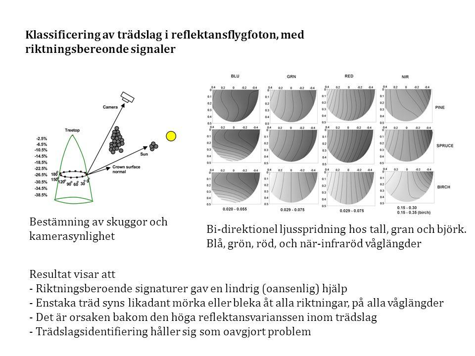 Klassificering av trädslag i reflektansflygfoton, med riktningsbereonde signaler