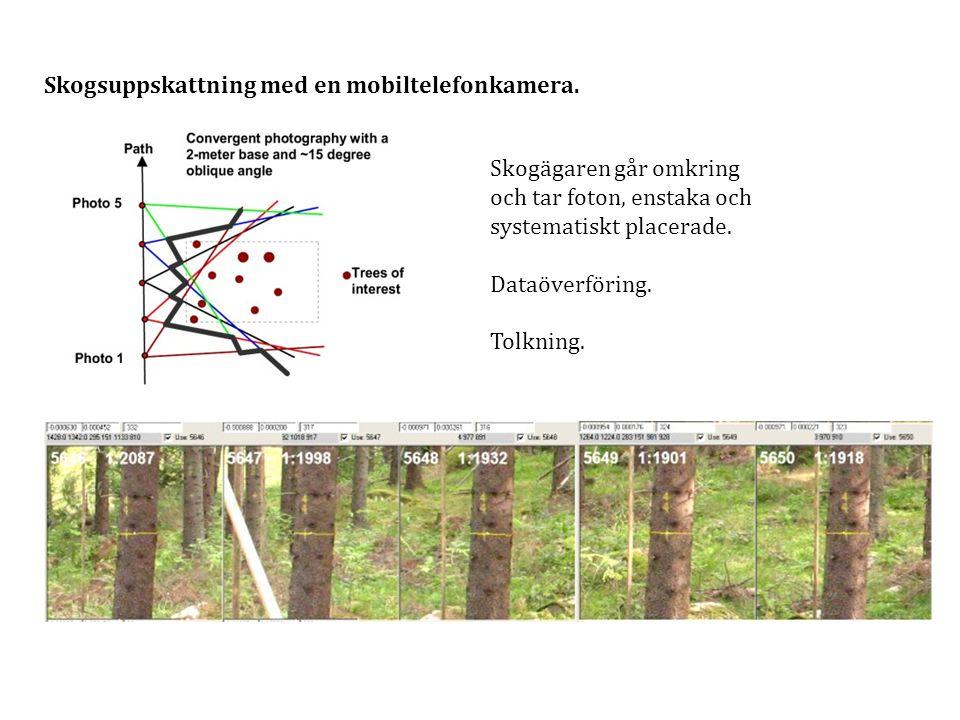 Skogsuppskattning med en mobiltelefonkamera.