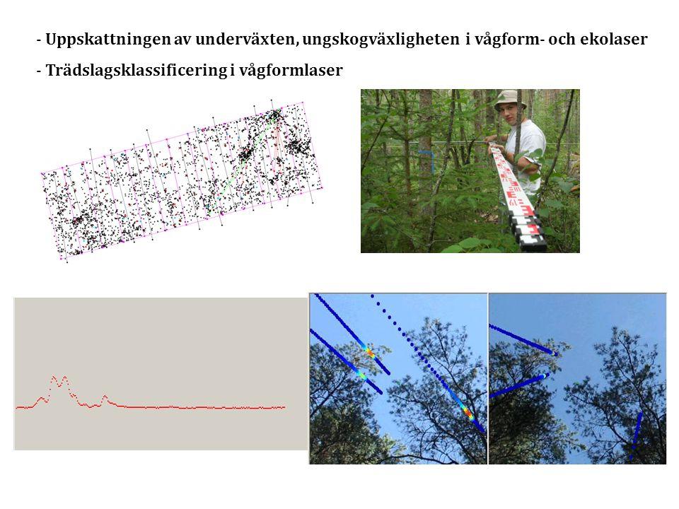 Uppskattningen av underväxten, ungskogväxligheten i vågform- och ekolaser