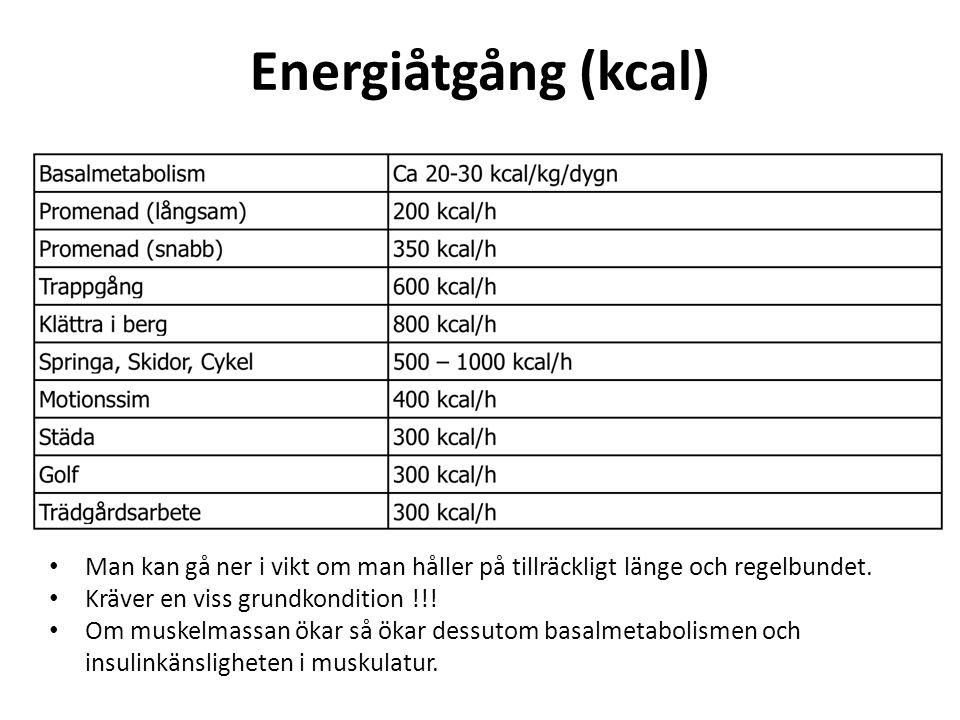 Energiåtgång (kcal) Man kan gå ner i vikt om man håller på tillräckligt länge och regelbundet. Kräver en viss grundkondition !!!