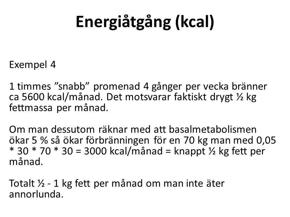 Energiåtgång (kcal) Exempel 4