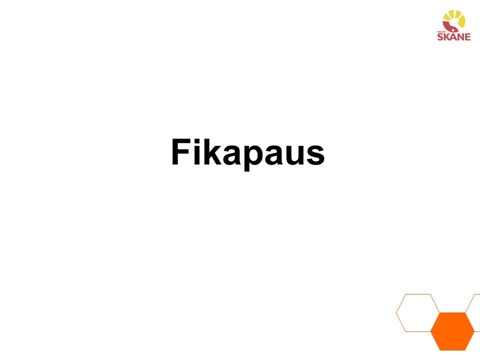 Fikapaus