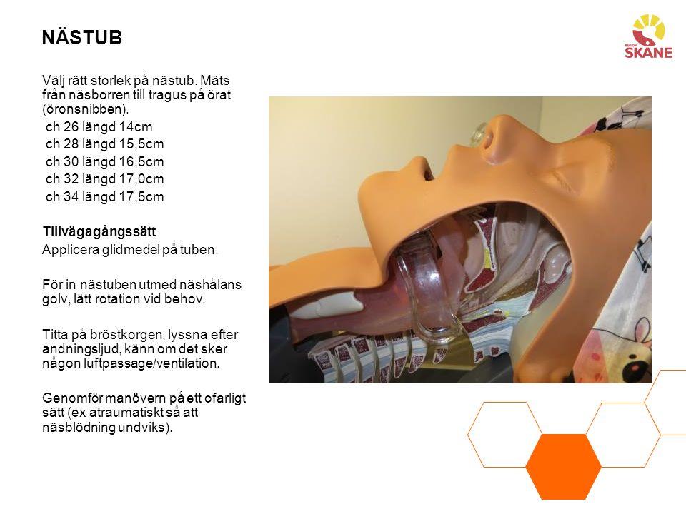 NÄSTUB Välj rätt storlek på nästub. Mäts från näsborren till tragus på örat (öronsnibben). ch 26 längd 14cm.