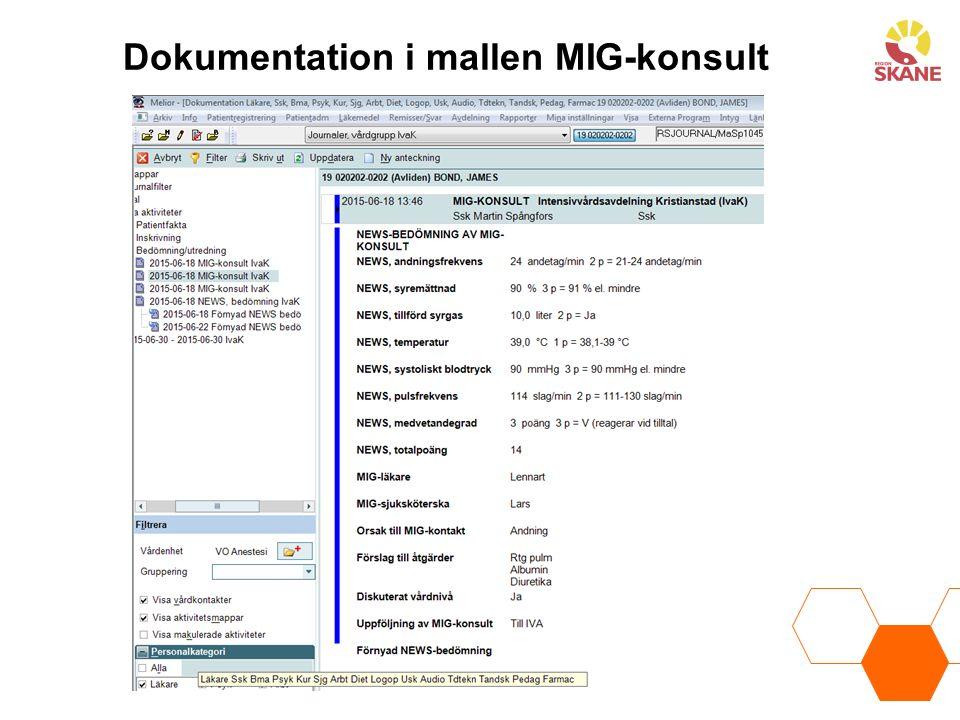 Dokumentation i mallen MIG-konsult