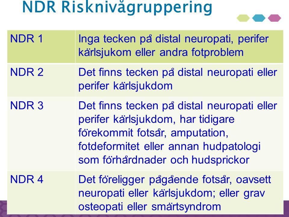 NDR Risknivågruppering