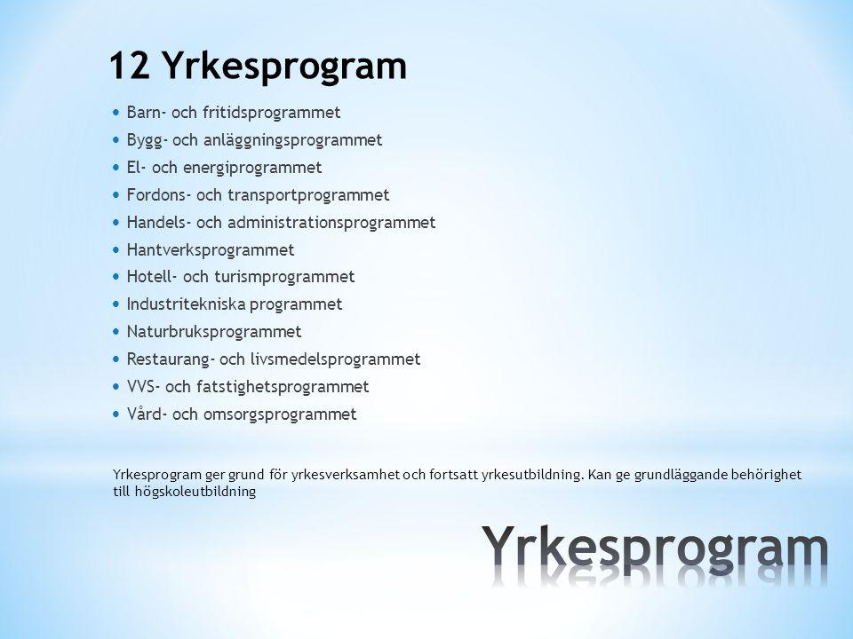 Yrkesprogram 12 Yrkesprogram Barn- och fritidsprogrammet