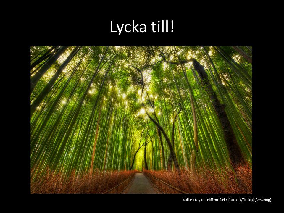 Lycka till! Källa: Trey Ratcliff on flickr (https://flic.kr/p/7cGN8g)