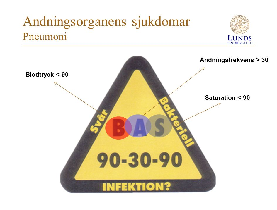 Andningsorganens sjukdomar Pneumoni
