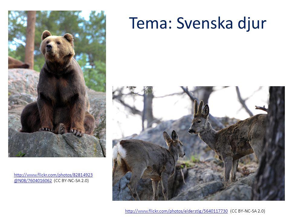Tema: Svenska djur http://www.flickr.com/photos/82814923@N08/7604016062 (CC BY-NC-SA 2.0)