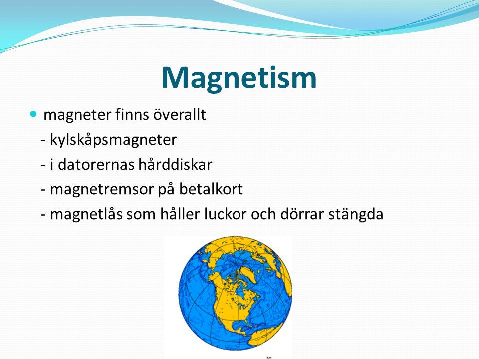 Magnetism magneter finns överallt - kylskåpsmagneter