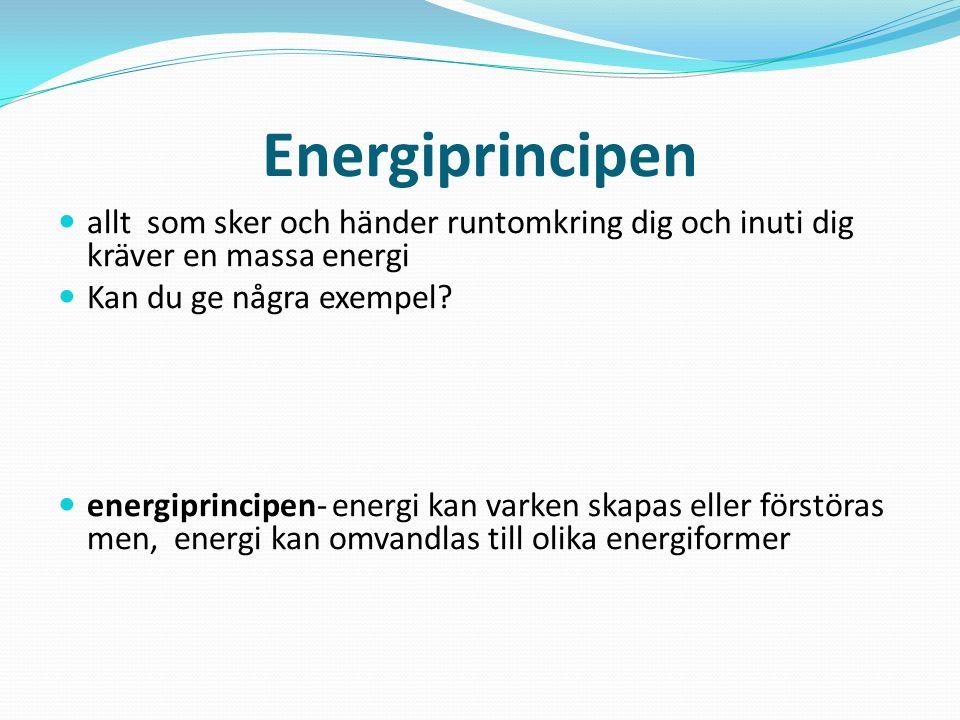 Energiprincipen allt som sker och händer runtomkring dig och inuti dig kräver en massa energi. Kan du ge några exempel
