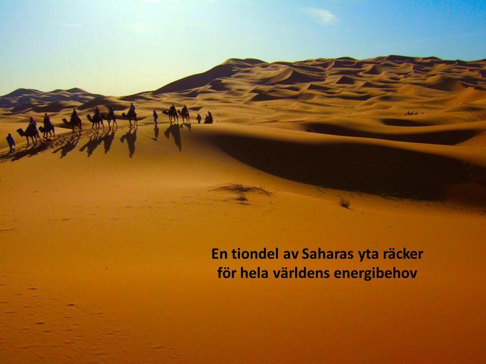 En tiondel av Saharas yta räcker för hela världens energibehov