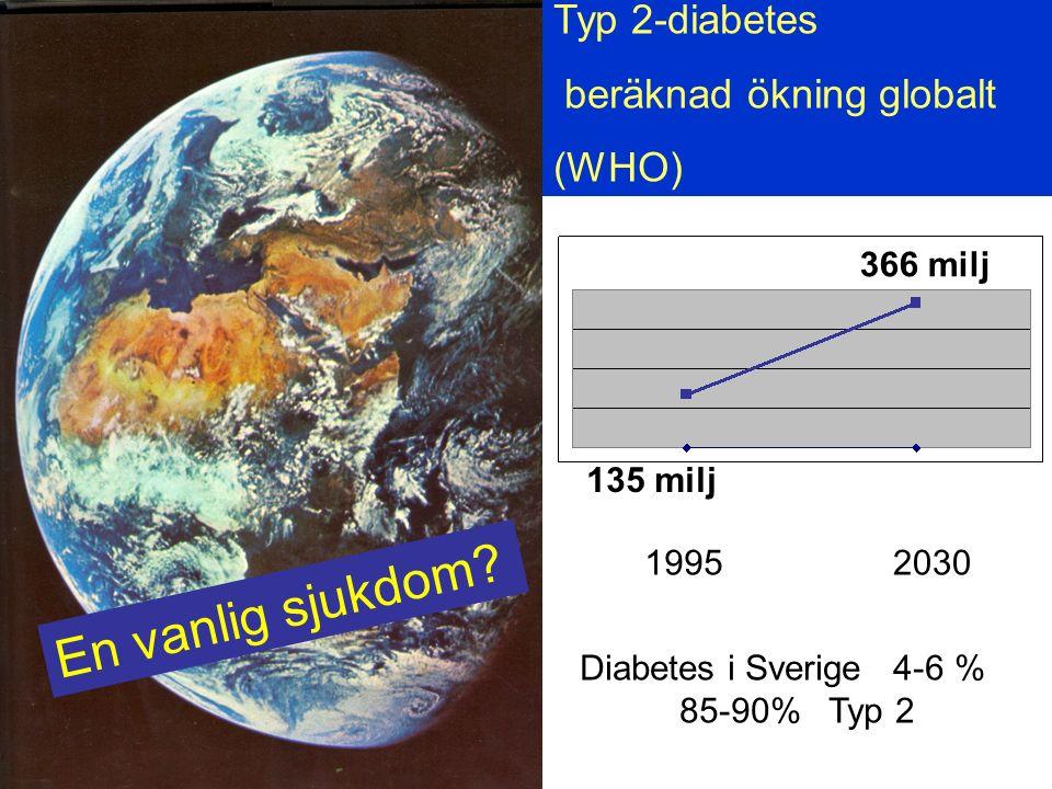 En vanlig sjukdom Typ 2-diabetes beräknad ökning globalt (WHO)