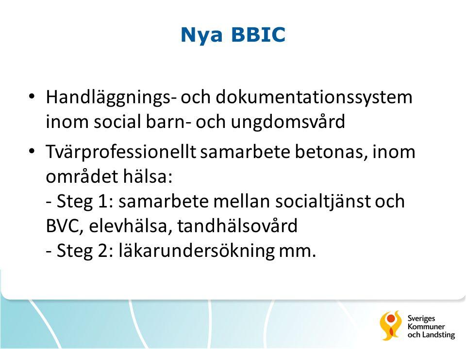 Nya BBIC Handläggnings- och dokumentationssystem inom social barn- och ungdomsvård.