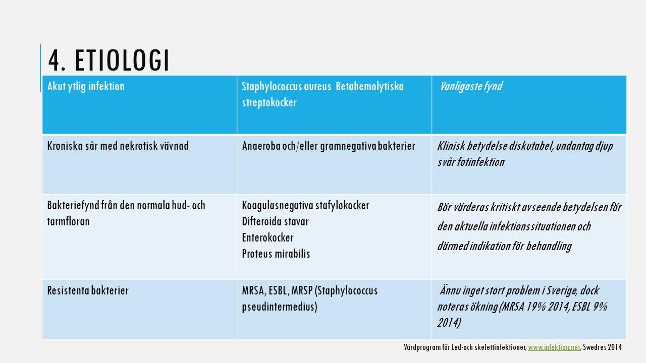 4. ETIOLOGI Akut ytlig infektion