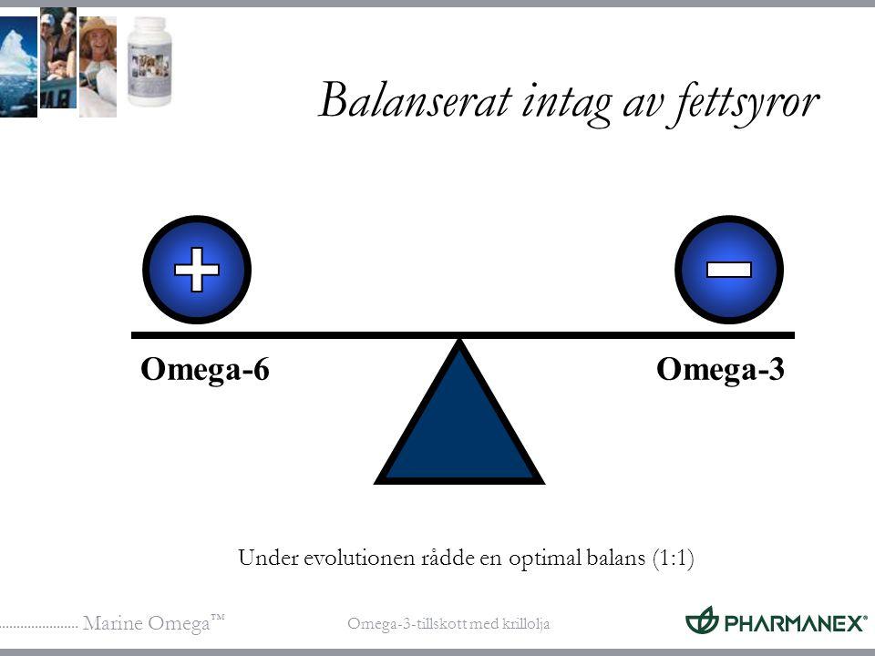 Balanserat intag av fettsyror