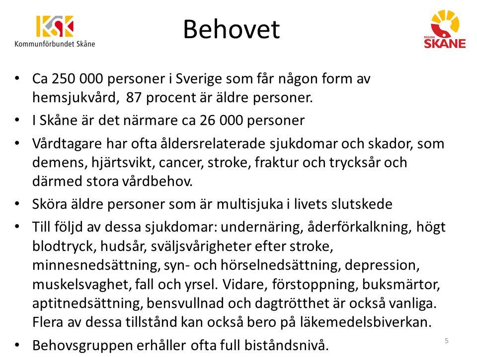 Behovet Ca 250 000 personer i Sverige som får någon form av hemsjukvård, 87 procent är äldre personer.