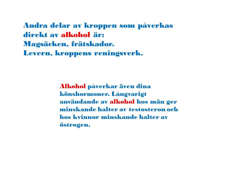 Andra delar av kroppen som påverkas direkt av alkohol är: