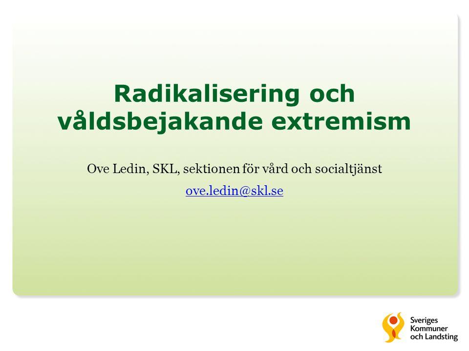 Radikalisering och våldsbejakande extremism